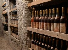Tokaj Macik Winery