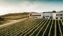 Világi winery