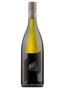 Weingut Pfaffl Grüner Veltliner Vom Haus 2018