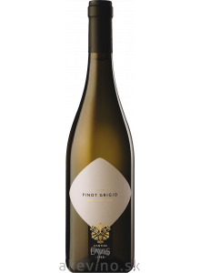 Lavis Pinot Grigio Trentino DOC 2019 BIO