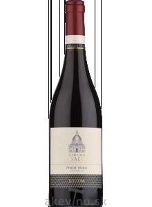 Cantina La Salute Magni Vitis Pinot Nero Trevenezie IGT