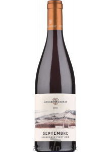 Edouard Delaunay Bourgogne Pinot Noir Rouge AOC Septembre 2019